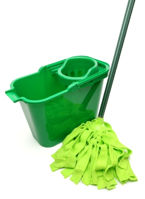 Green cleaning by Pristine Cleaning Service